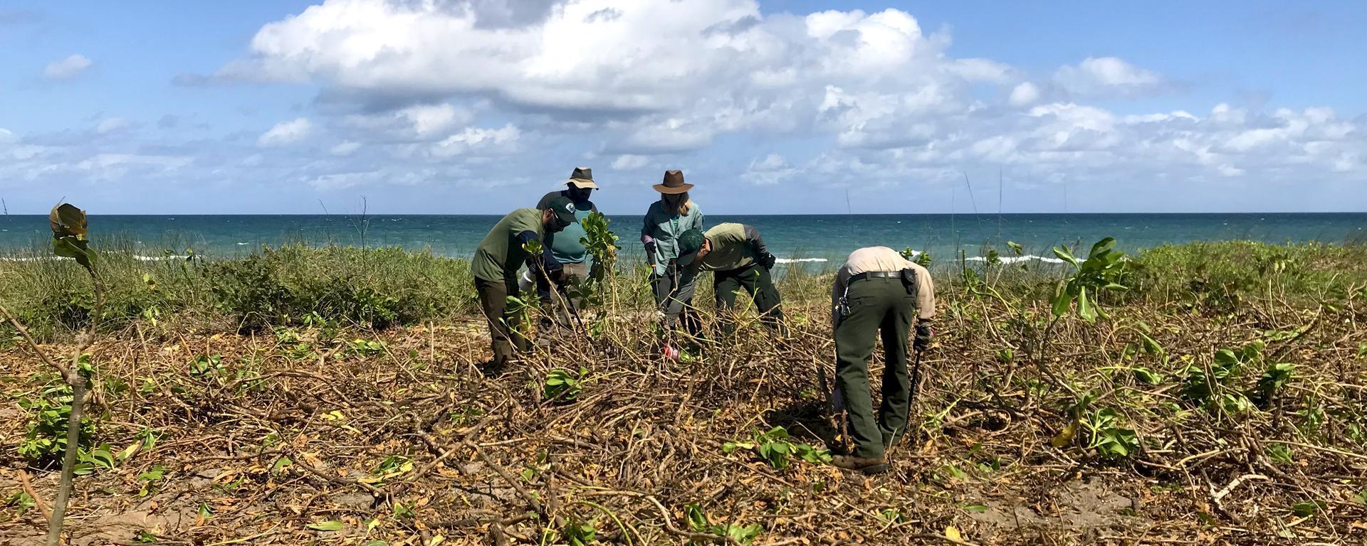 Ecosystem Restoration and Management staff