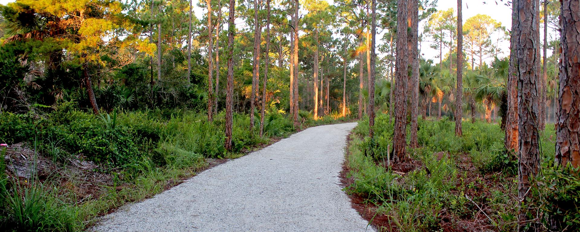 A gravel path at Deleplane Preserve