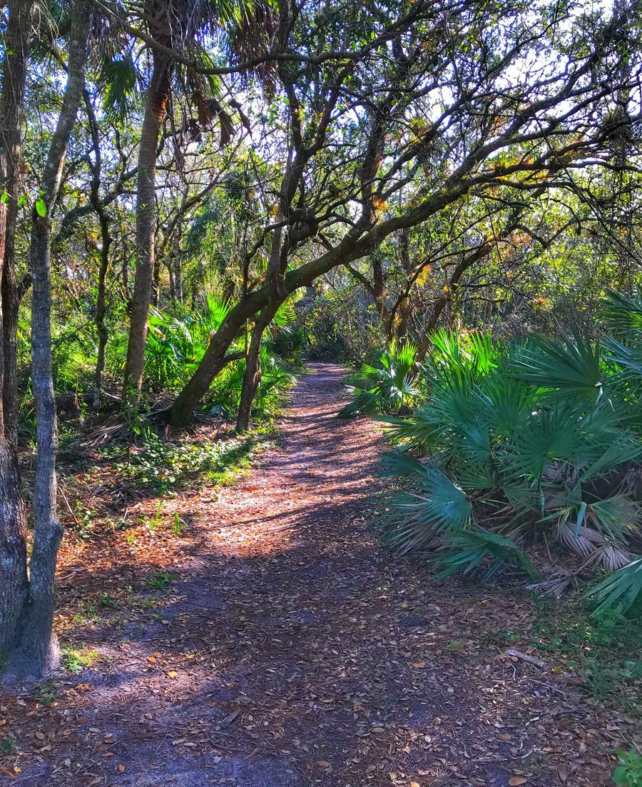 Halpatiokee Trails