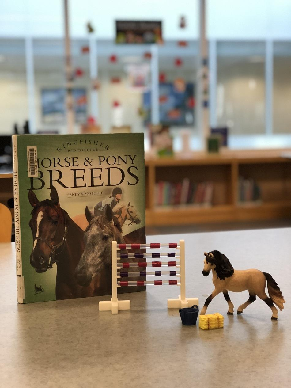 picture of horse book and 3D printed horse toys