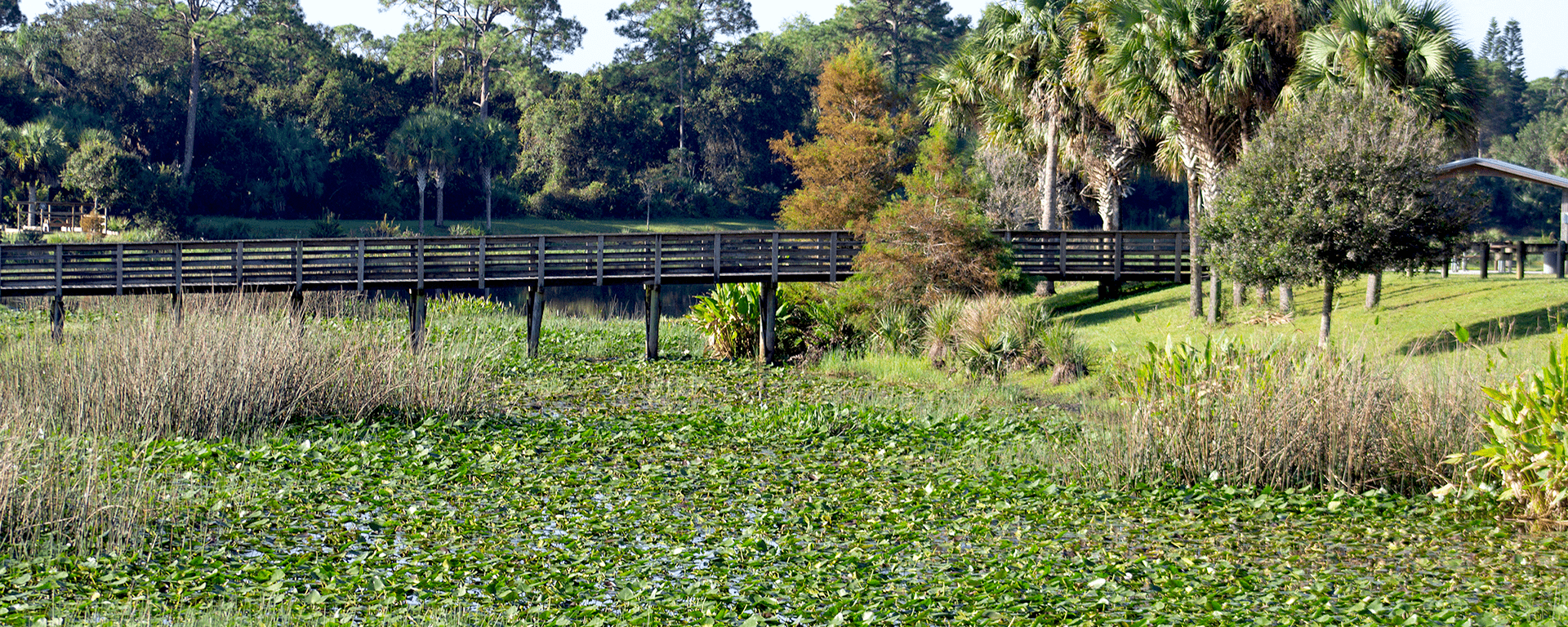 A boardwalk over the lake at Phipps Park
