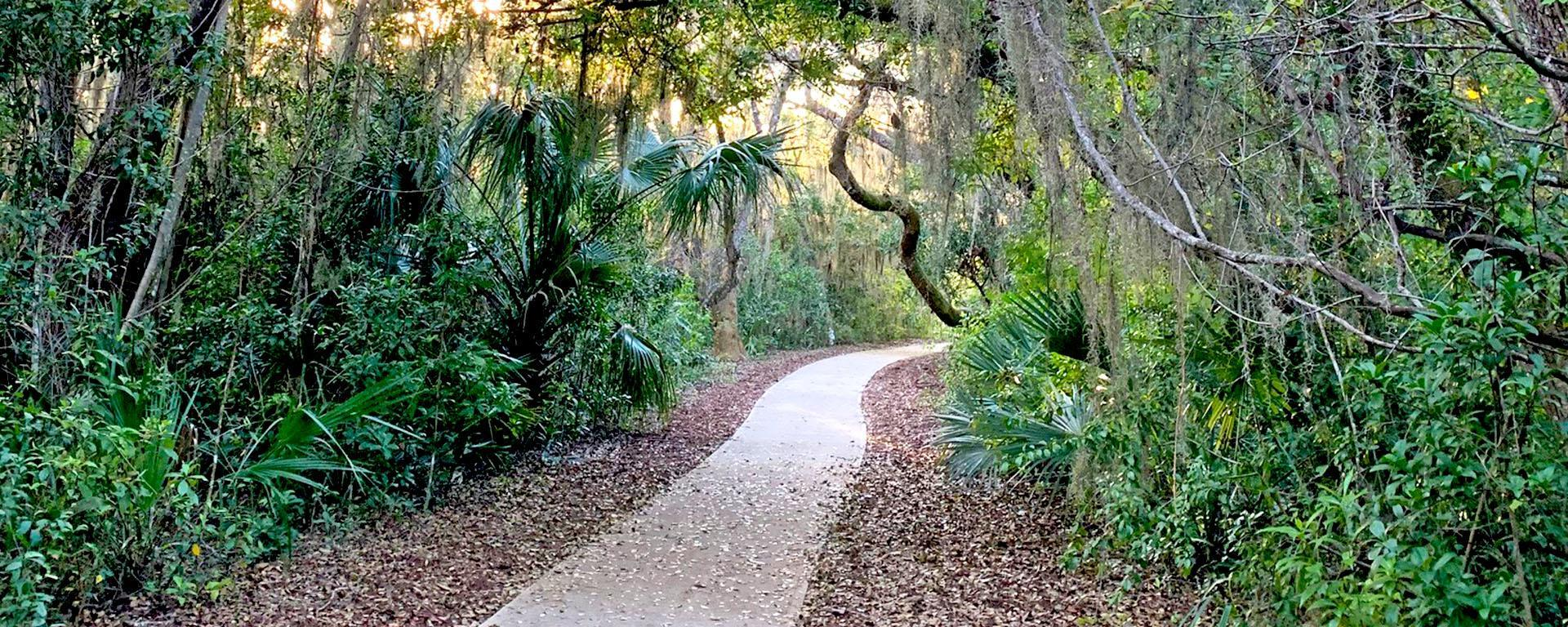A paved path at Maggy's Hammock