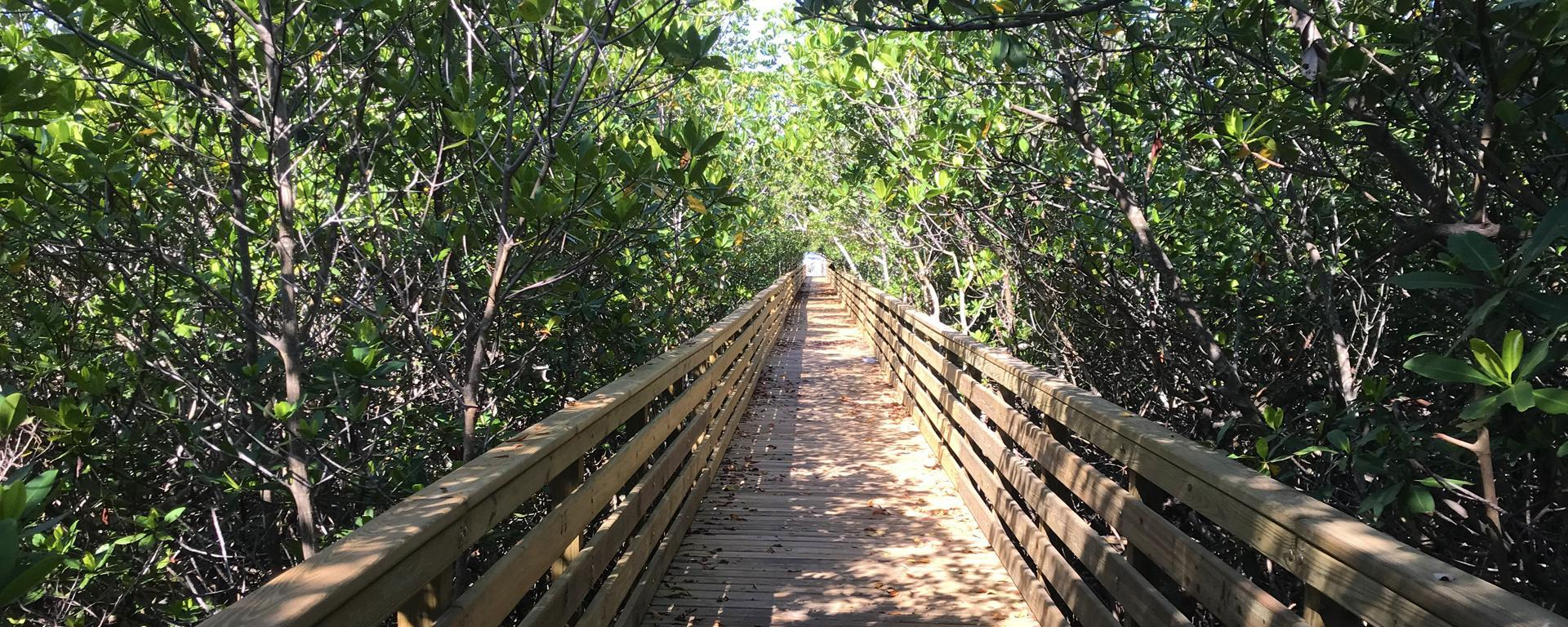 A boardwalk at Clifton S. Perry Beach