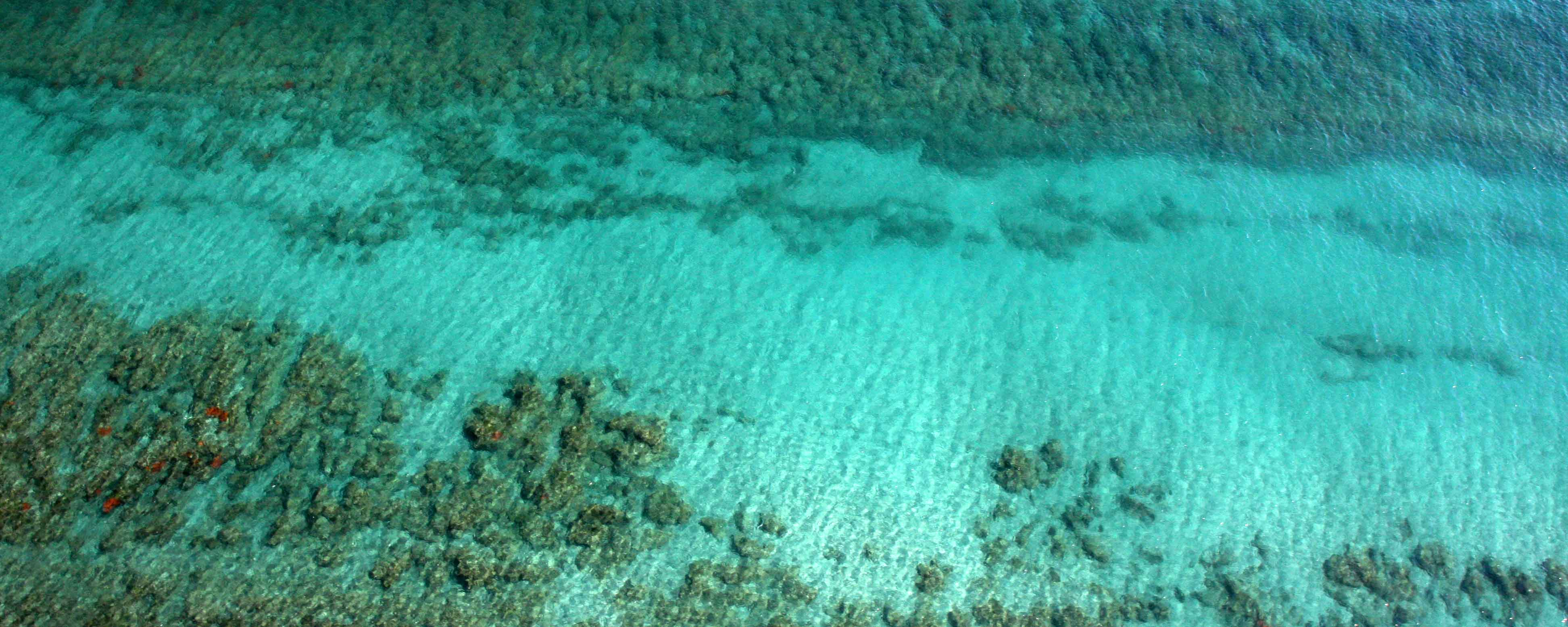 An aerial above Bathtub Reef Beach
