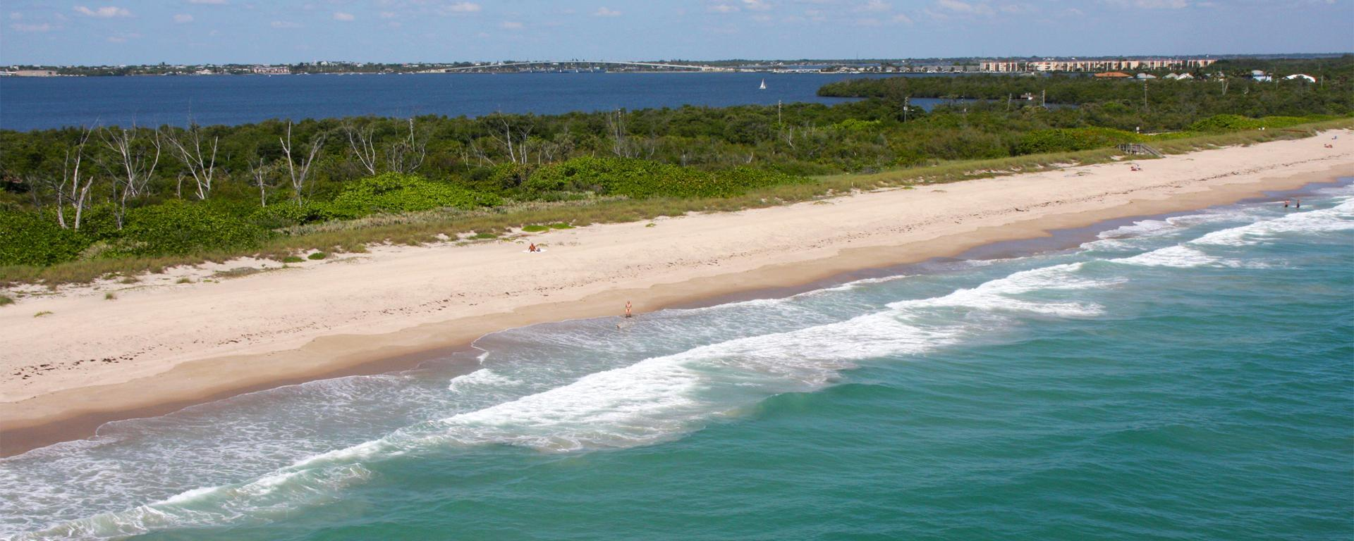 An aerial above the coastline for shoreline protection