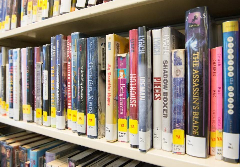 Image of young adult books on a shelf