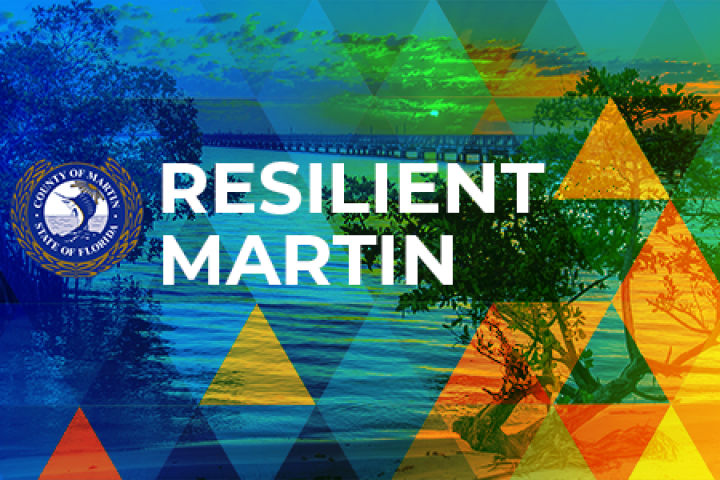 Resilient Martin
