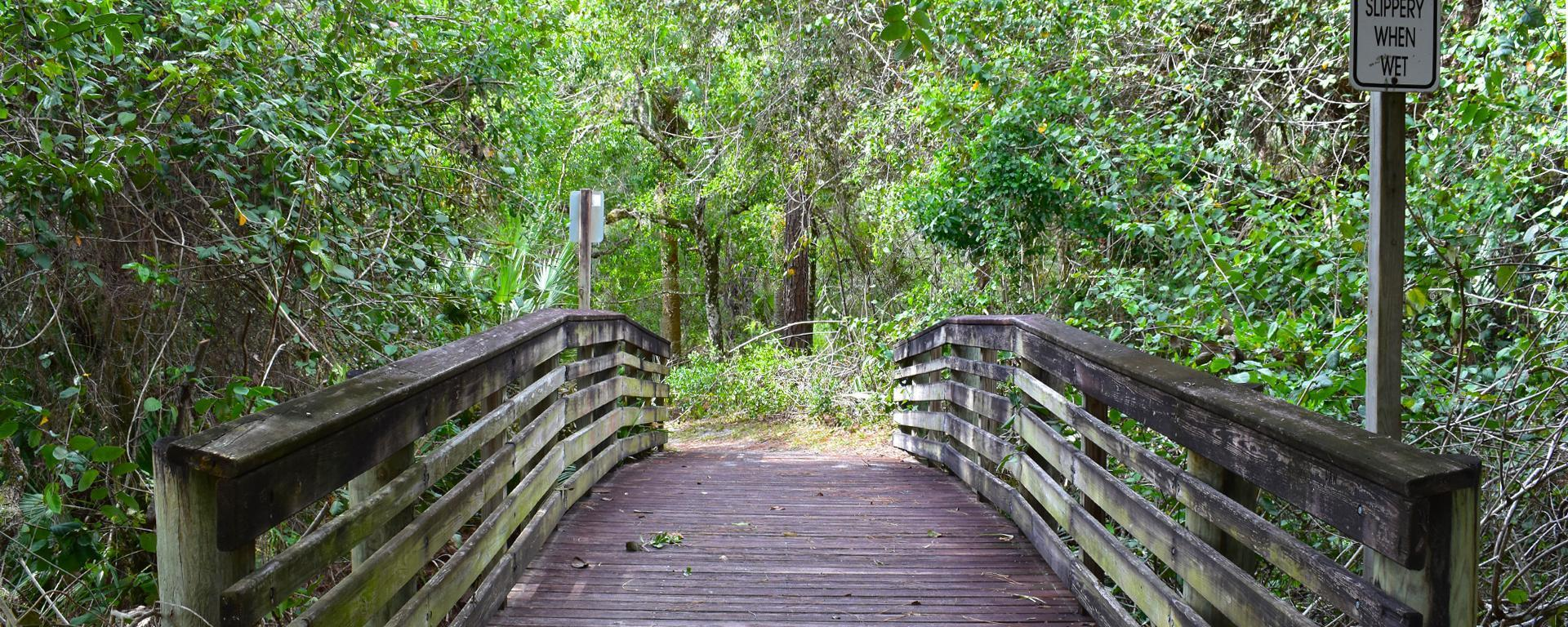 a bridge at Halpatiokee Regional Park