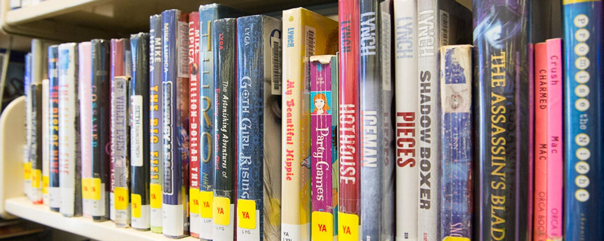 Image of young adult books on the shelf
