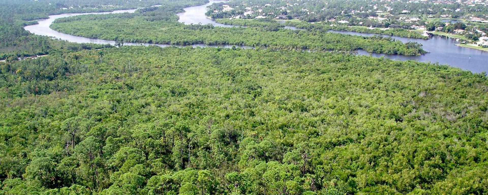 An aerial above Kiplinger preserve