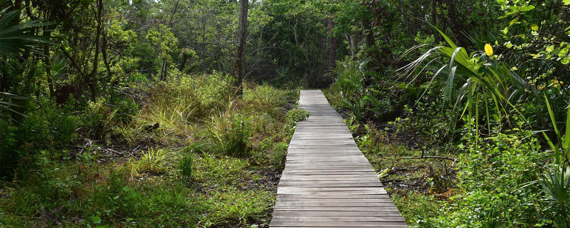 Kiplinger Nature Preserve