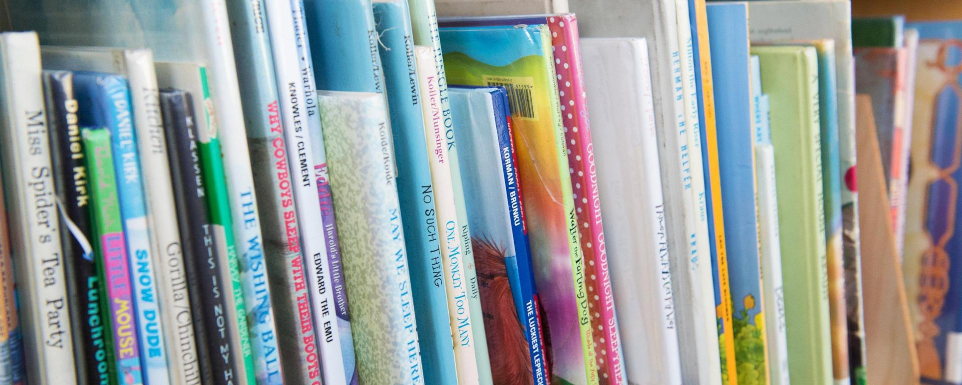 image of kids books on the shelf