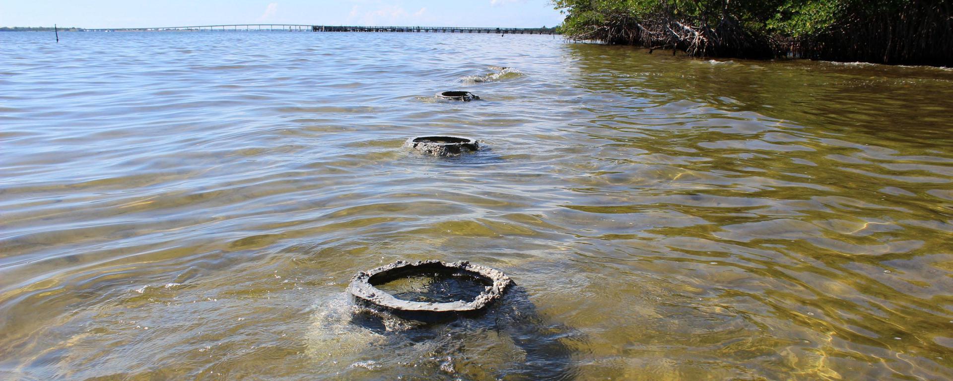 Reef balls along the shoreline