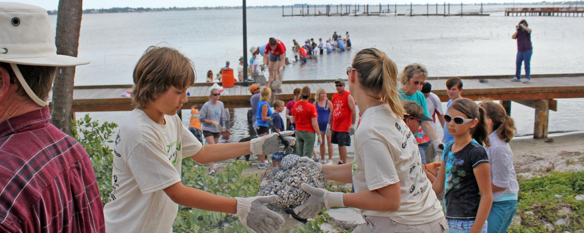 A group of volunteers creating living shorelines