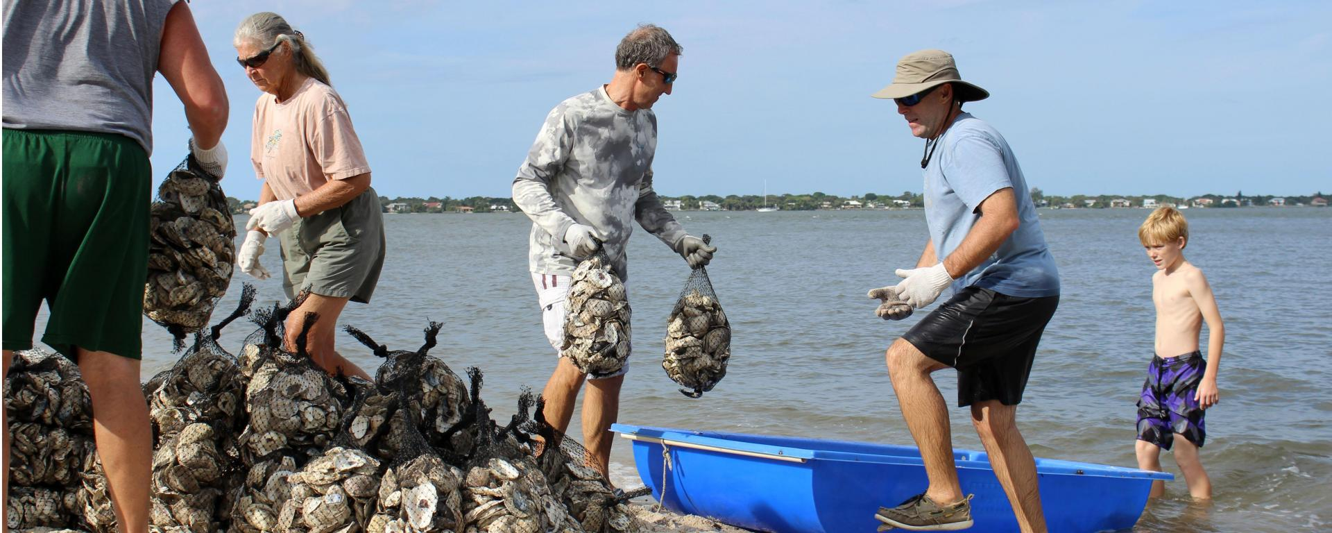 A group of volunteers collecting oyster bags
