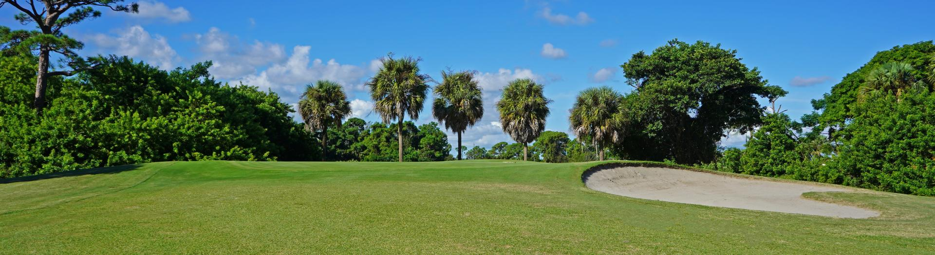 Golf course greens with palm trees