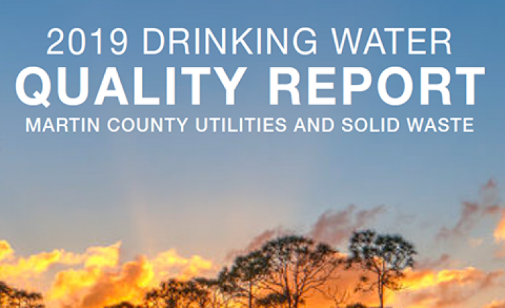 2019 Drinking Water Quality Report