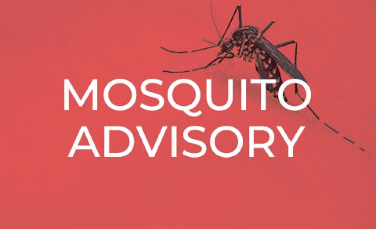 Mosquito Advisory