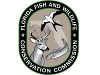 Florida Fish and Wildlife